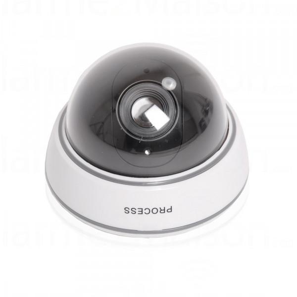 Caméra Factice dôme avec LED intégrée